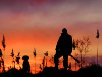 2016-2017 Duck Hunting Season Info