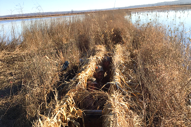 hunting-in-the-blinds-waterfowl-greene-county-ar