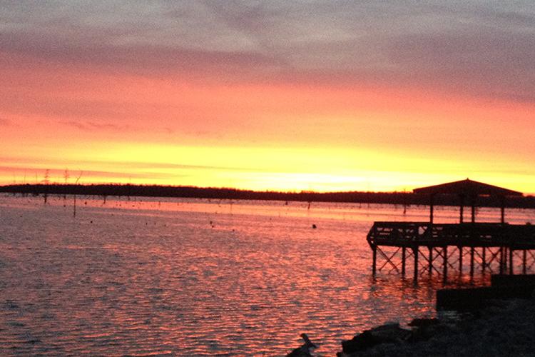 sunset-black-river-mallard-resort